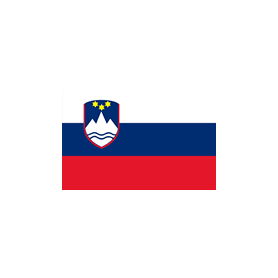 Bandiera slovena 20x30cm