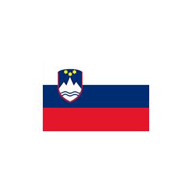 The flag of Slovenia 20x30cm