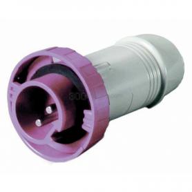 2-pole 12 / 24V 16A waterproof plug