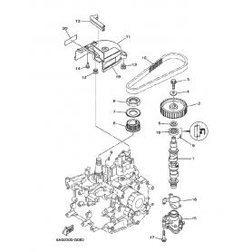 Cinghia distribuzione 9,9 -20 hp
