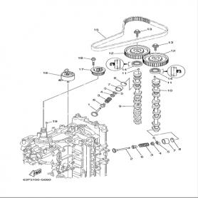 Cinghia distribuzione F150