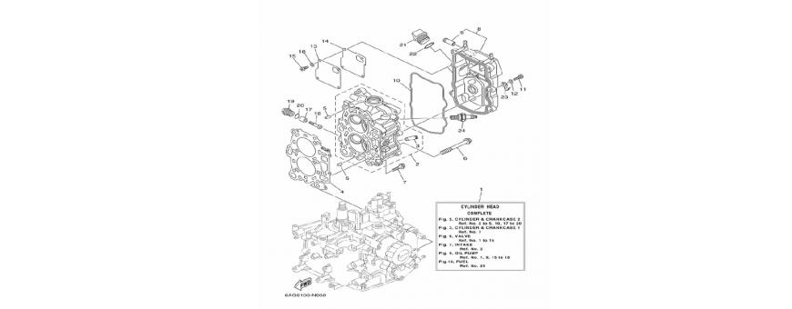 The engine block F9.9H
