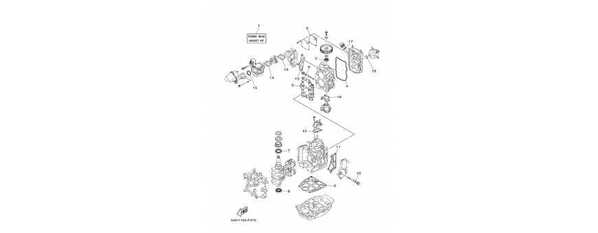 Manutenzione blocco motore F15C-F20B