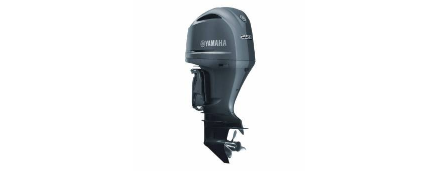Motor outboard F250D