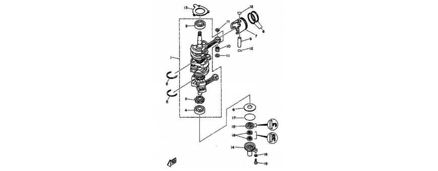 The motor shaft 25/70 hp, 25 hp, 25 hp, 25cv, 25 hp, 25/70hp top 700